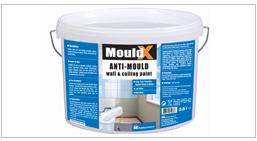 mouldx paint